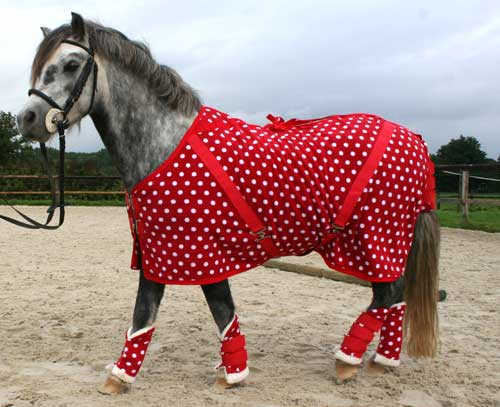 Equestrian Supplies Horse Rugs Personalised Saddle Pads Coolers Ride On And Cutaway Exercise Sheets Cross Country Clothing