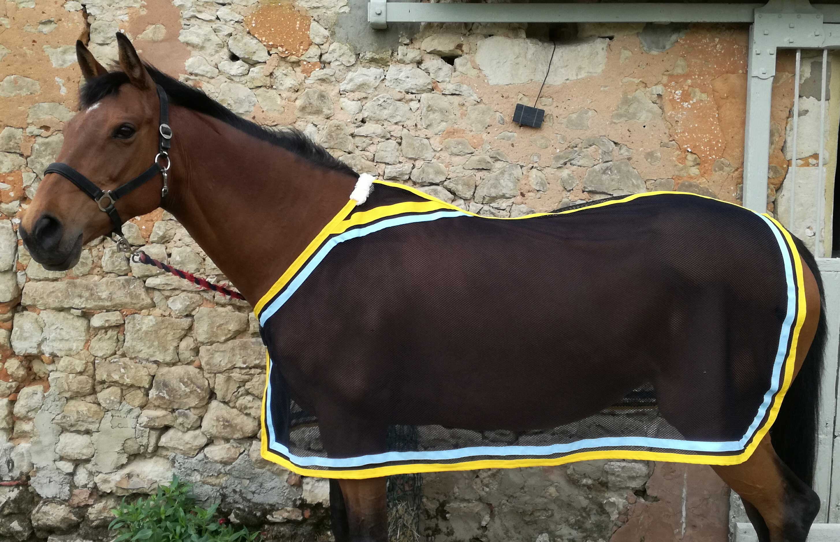 Horse Rugs And Cross Country Colours