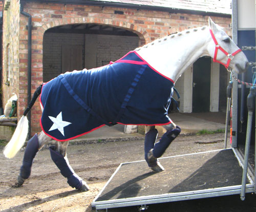 Personalised Horse Rugs And Cross Country Colours